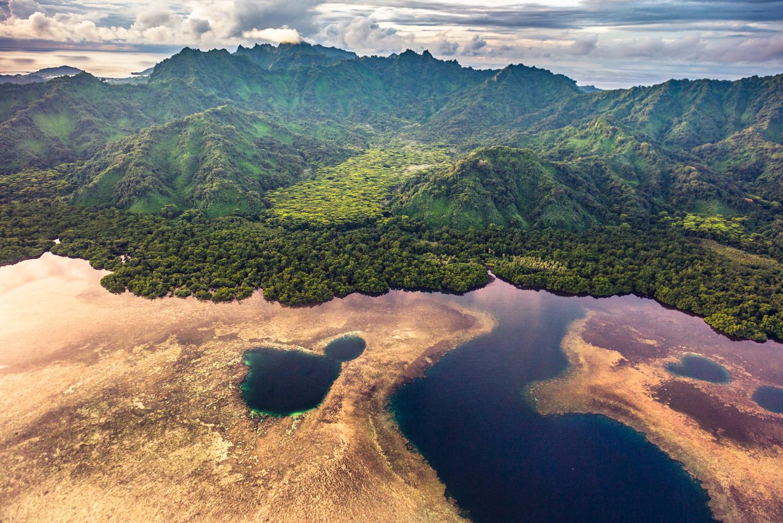 vegetatia-coplesitoare-a-insulei